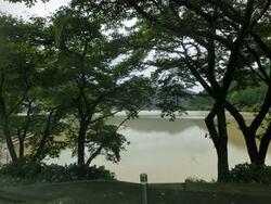 茶色の音水湖