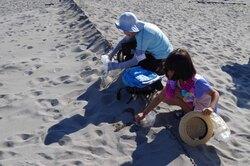 上流の砂をプレゼント