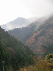 波賀町谷の山並み