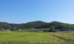 20121020_110252.jpg