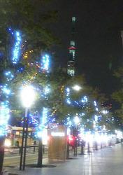 錦糸公園・スカイツリー12-23