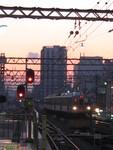 2012.3-5:Kawai&Tokyu 027.JPG