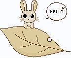 2006年09月03日_aki-usa2.jpg