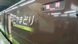 Yamadori485@DSC_0047